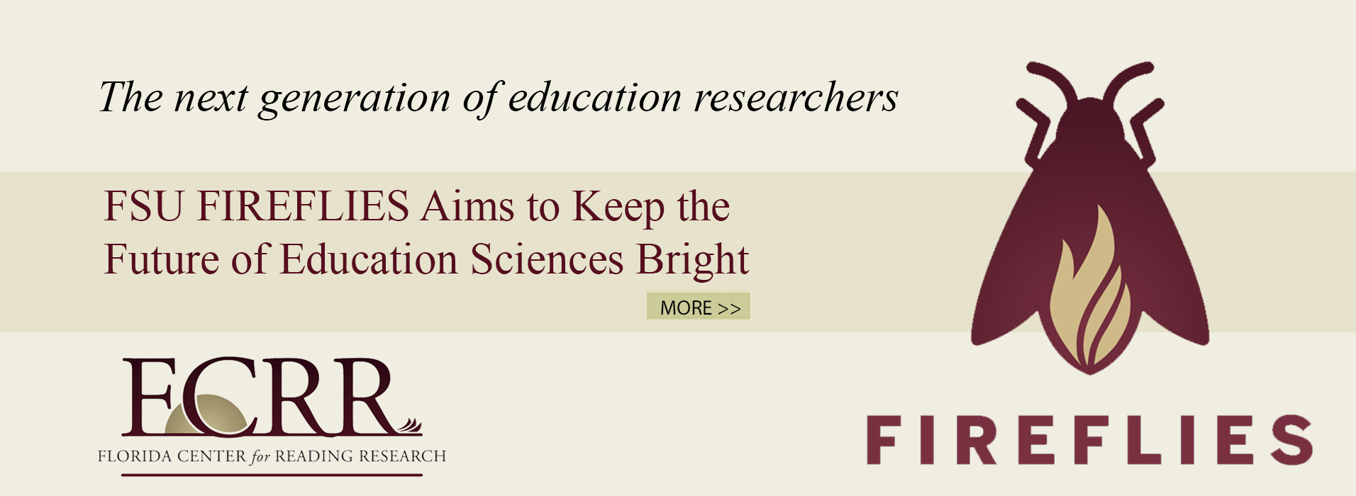 FSU FIREFLIES Aims to Keep the Future of Education Sciences Bright