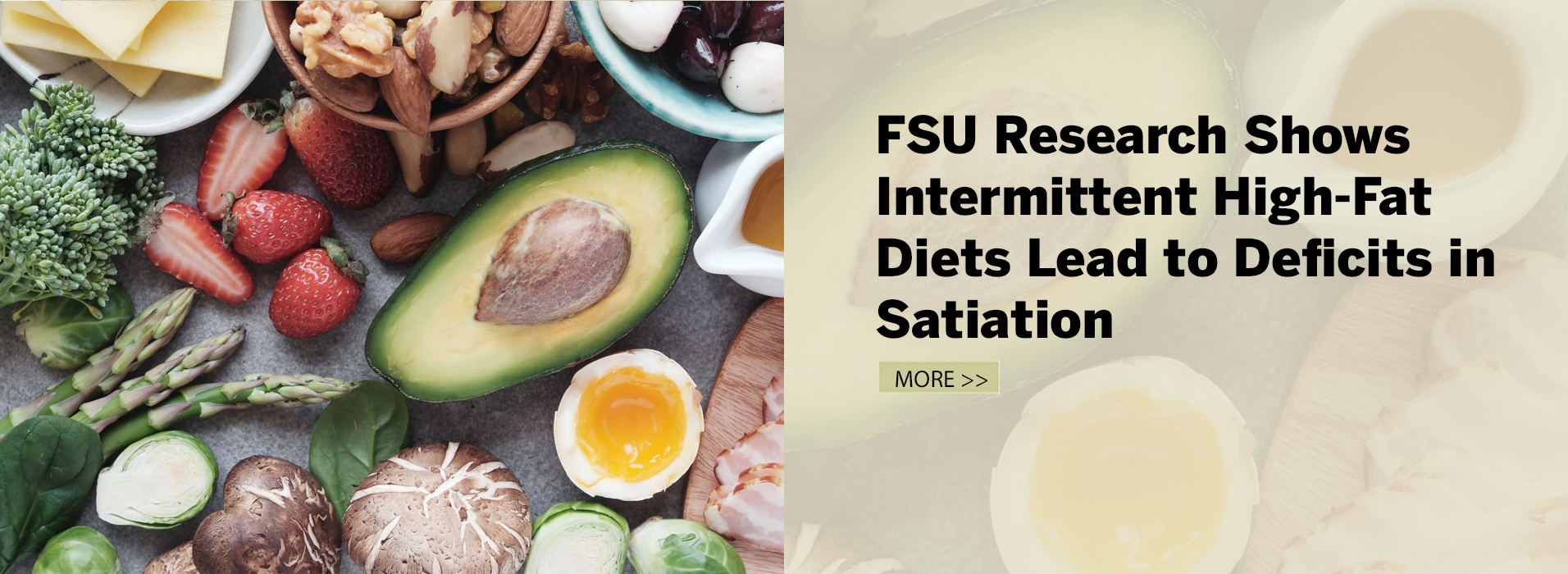 FSU Research Shows Intermittent High-Fat Diets Lead to Deficits in Satiation