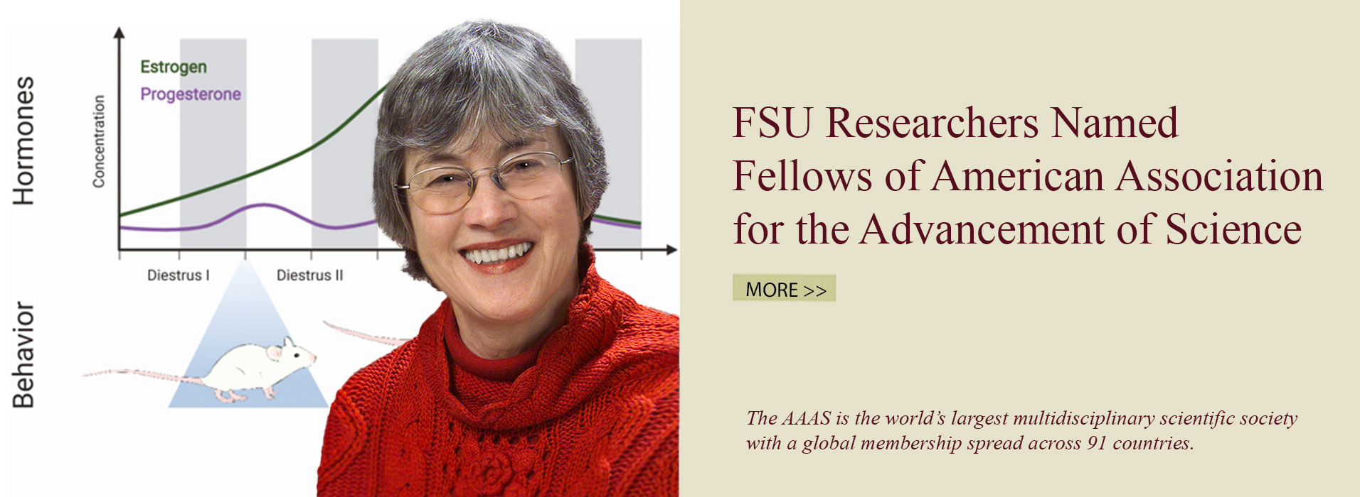Researchers Named Fellows of American Association for the Advancement of Science