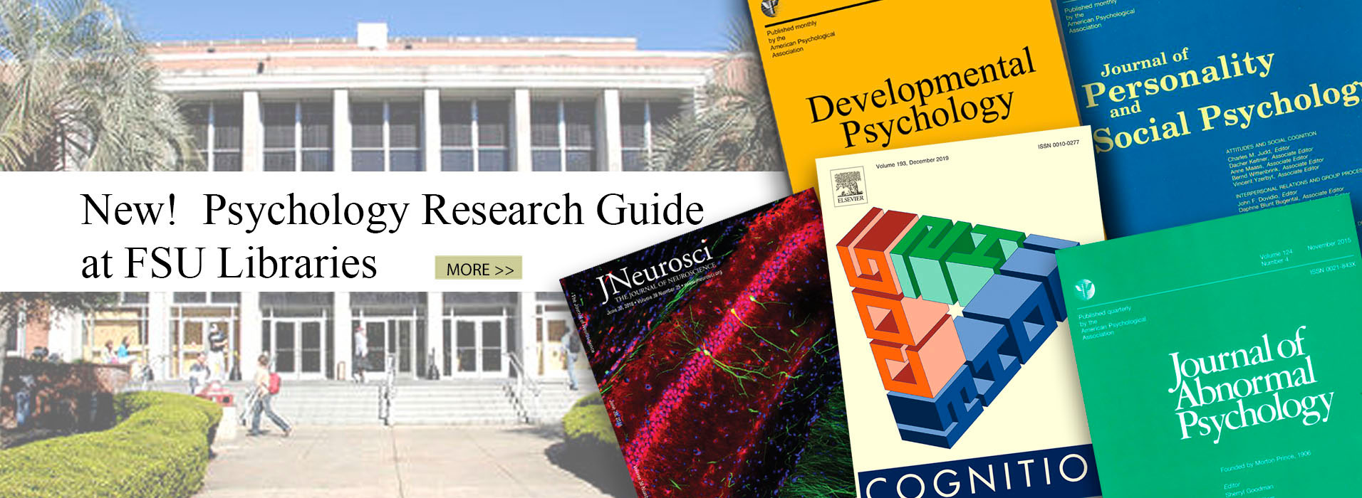 Psychology Research Guide at FSU Libraries